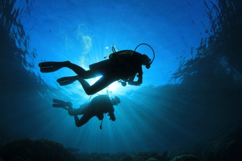 puno-jedro cape-town-diving-spots